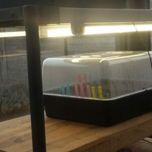 een lichtbak voor je planten